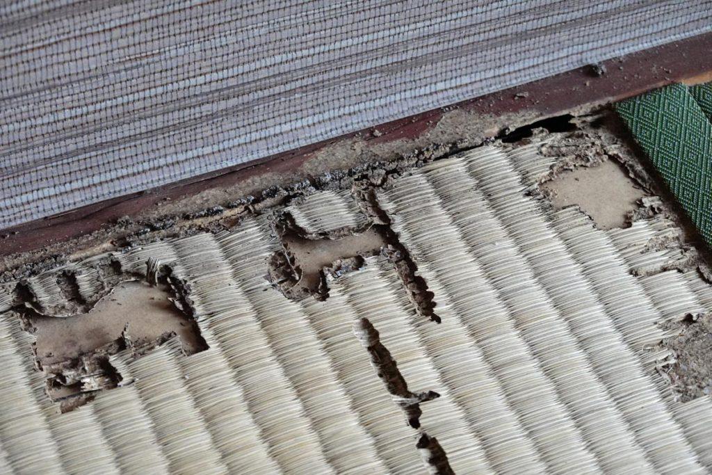 カンザイシロアリの被害跡