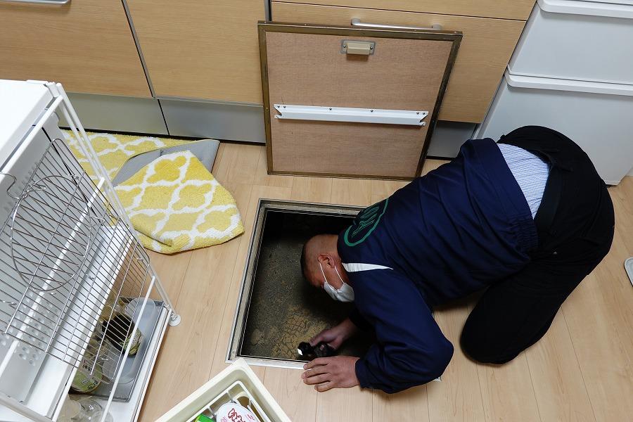 シロアリ調査で床下の下見をするところ