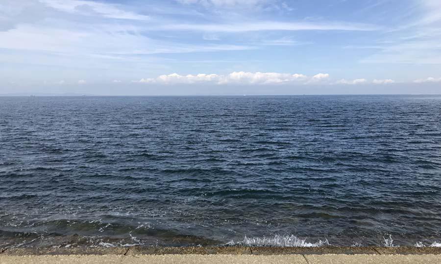 事務所の目の前の海